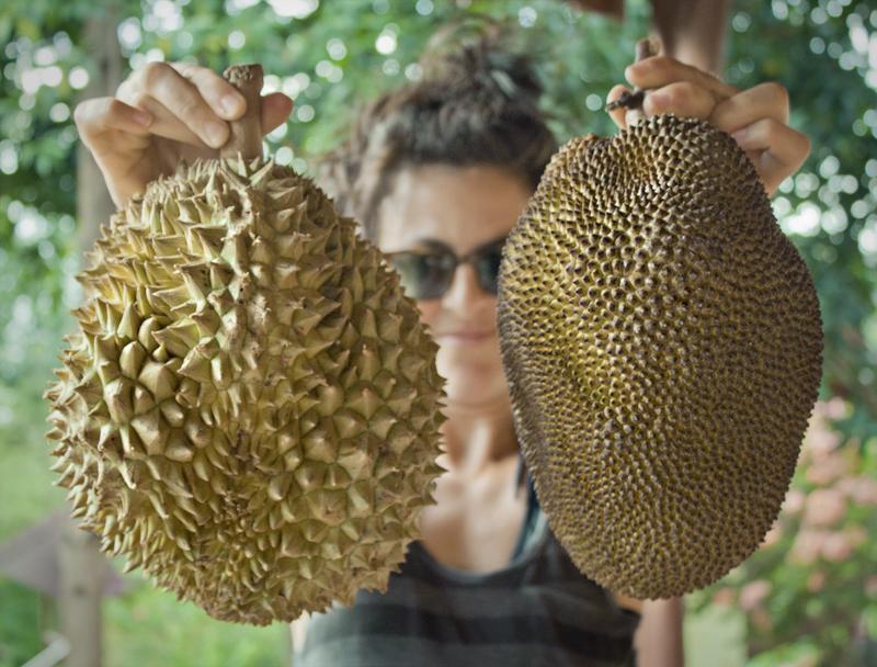 8jackfruit-durian