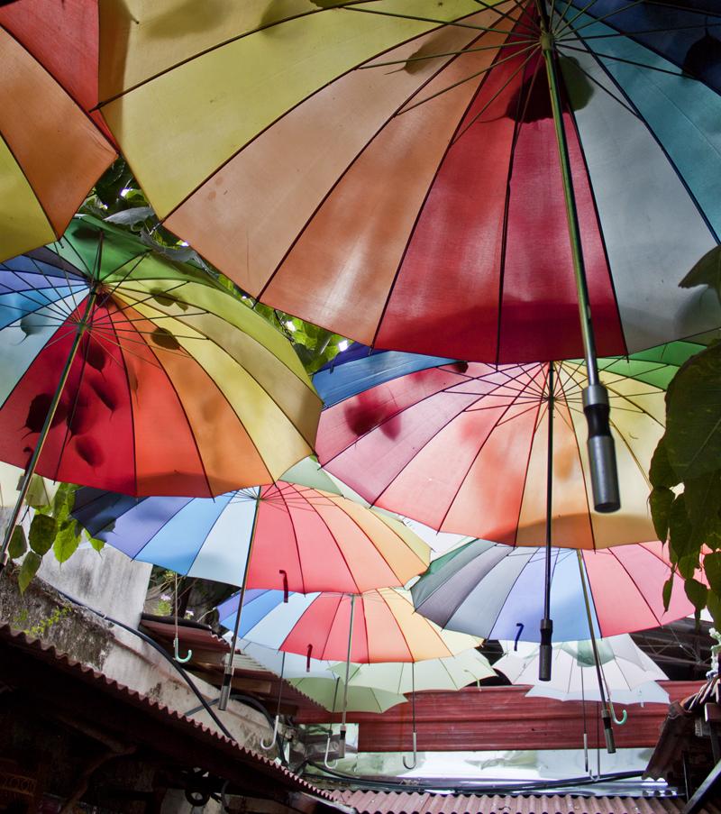 3umbrella2