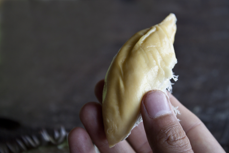 durian6