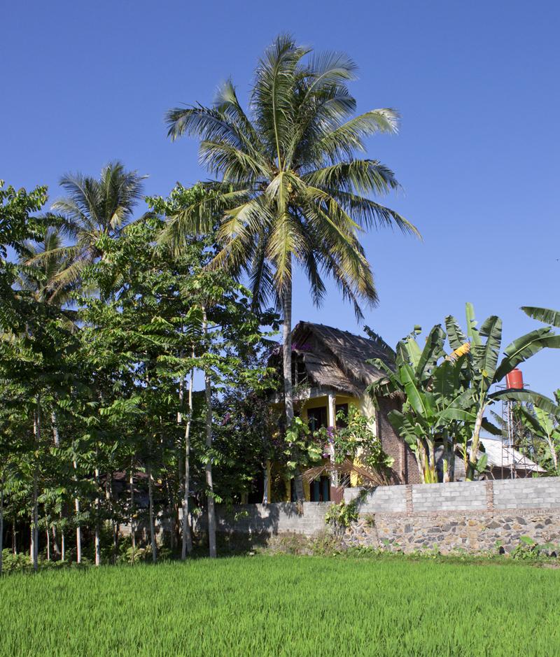 6tobacco-house
