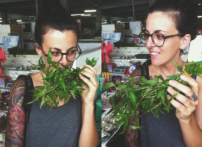 Vietnamese coriander, Vietnamese mint, laksa herb, Persicaria Odorata or daun kesum