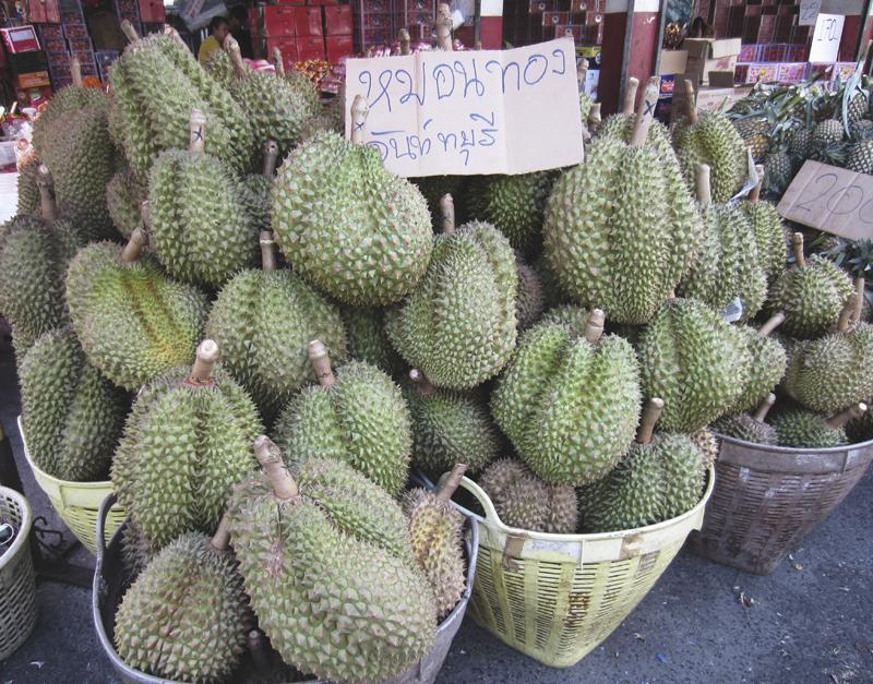 Durian in Muang Mai Market, Chiang Mai, Thailand