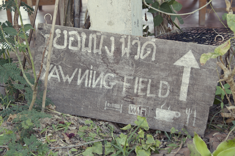 Yawning Field, Pai, Thailand