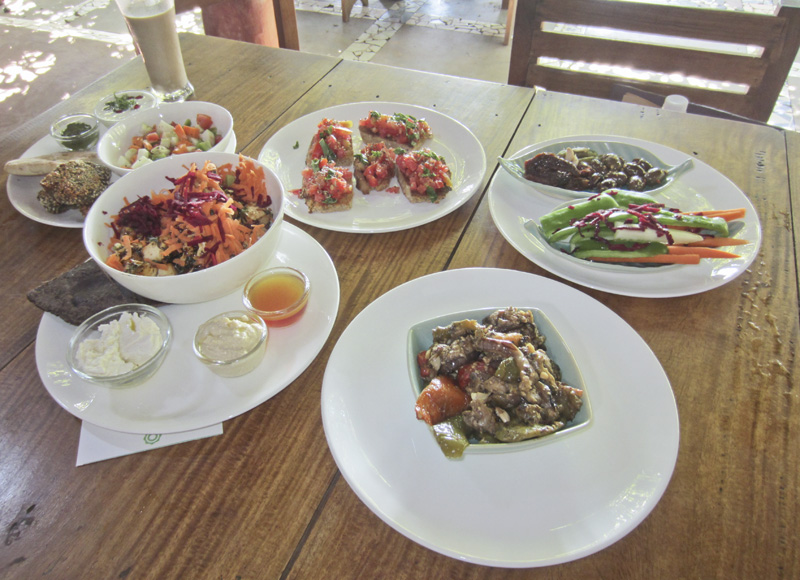 The Space Goa, vegan and vegetarian food in Agonda, Goa