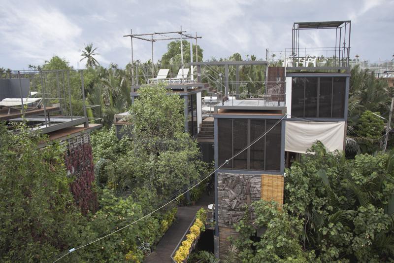 Bangkok Tree House Eco Resort Review