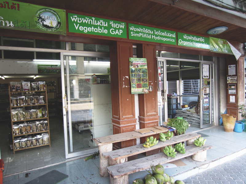 Vegan food guide of Koh Phangan, Thailand. Conscious Cooking, The Organic Shop, Thong Sala.