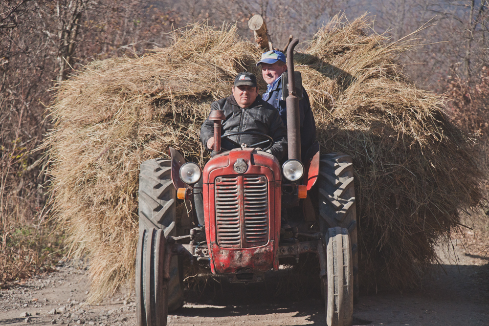 farmers in serbia